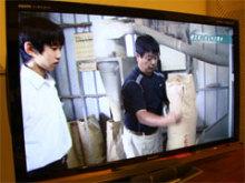 蛍の里だより ~新着情報~-NHKニュース